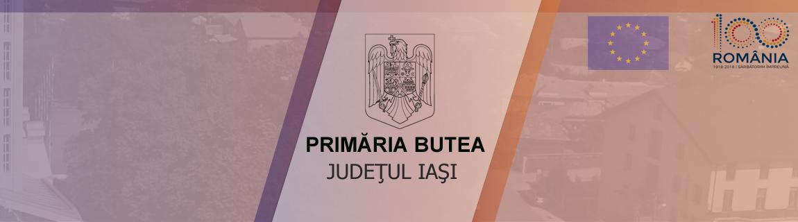 Primaria Comunei Butea